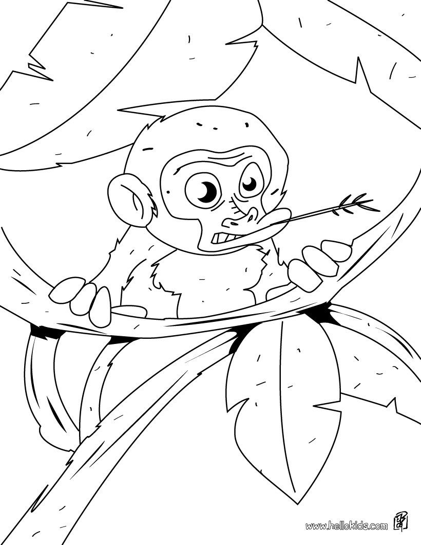 Baby monkey coloring page. More jungle animals coloring sheets on ...