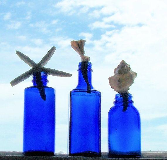 Cobalt Blue Glass Antique Bottles seashell by GoneToTheBeach