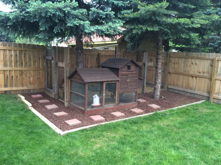 Urban Farming Chicken Coop Pine Tree Trim Stepping