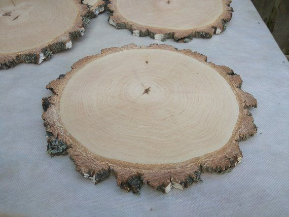 A Set Of 6 Birch Slices 10 Large Birch Wood Slices 10 Inch Wood Slices Wood Slices Rustic Weddi Wood Slices Rustic Wedding Decor Birch Wood