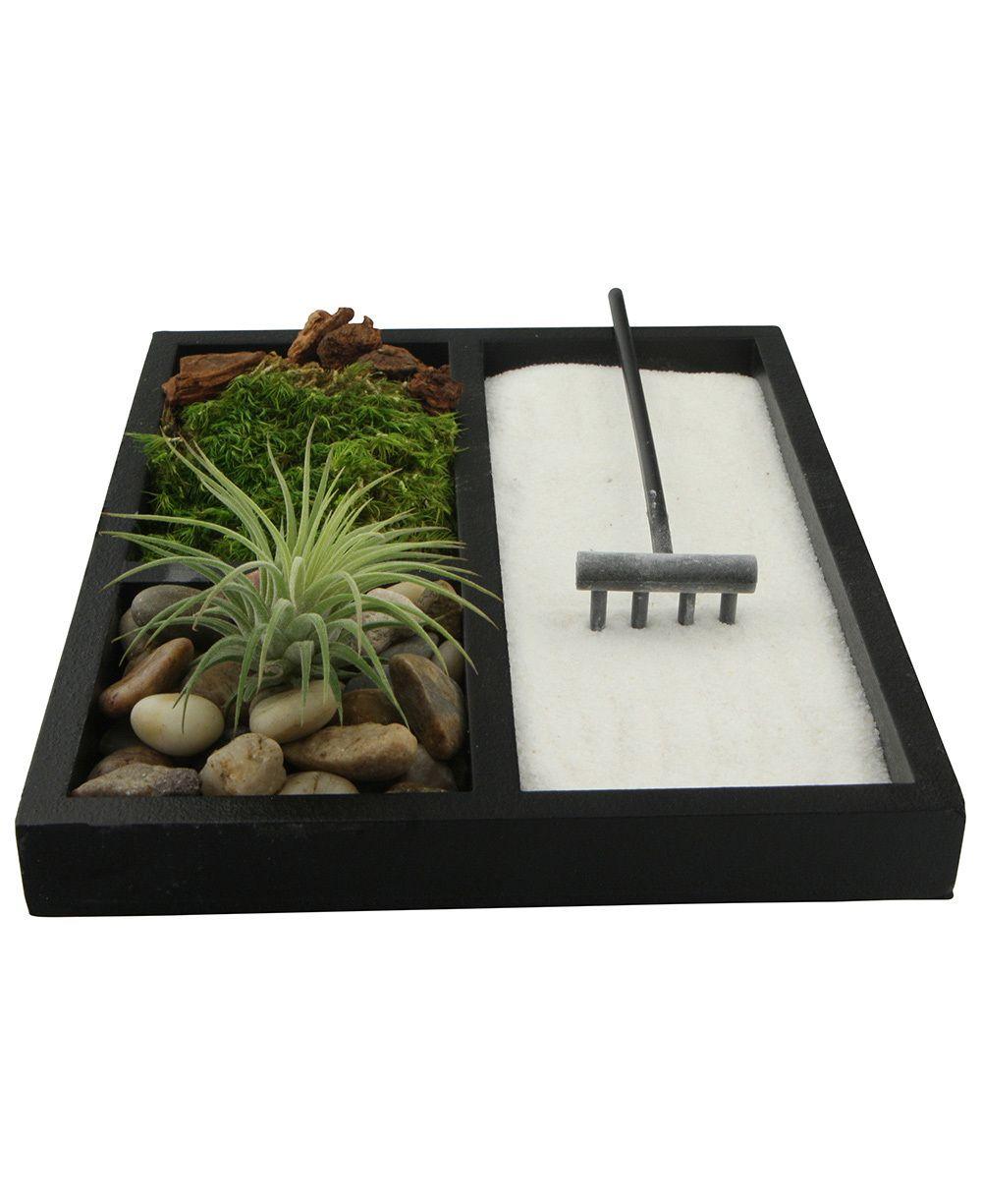Meditation Zen Garden Terrarium With Natural Elements