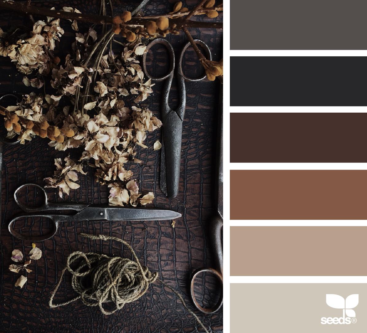 Dark Color Palette, Coordinating Paint