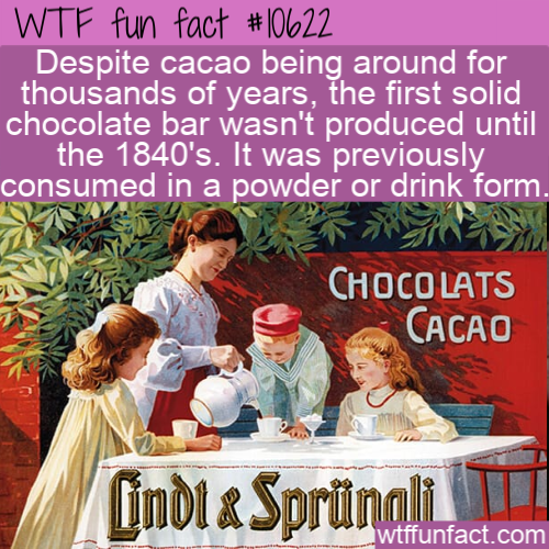 Wtf Fun Fact The Chocolate Bar Invention In 2021 Wtf Fun Facts Daily Fun Facts Fun Facts