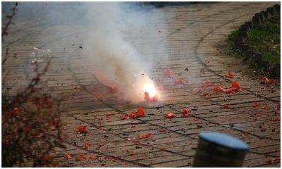 Animal Friends Croatia call for a firecracker ban – The Dubrovnik Times
