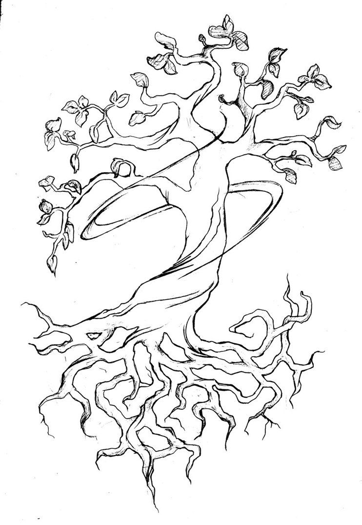 Illustration Tattoos: Tree Of Life Tattoo Designs For Women