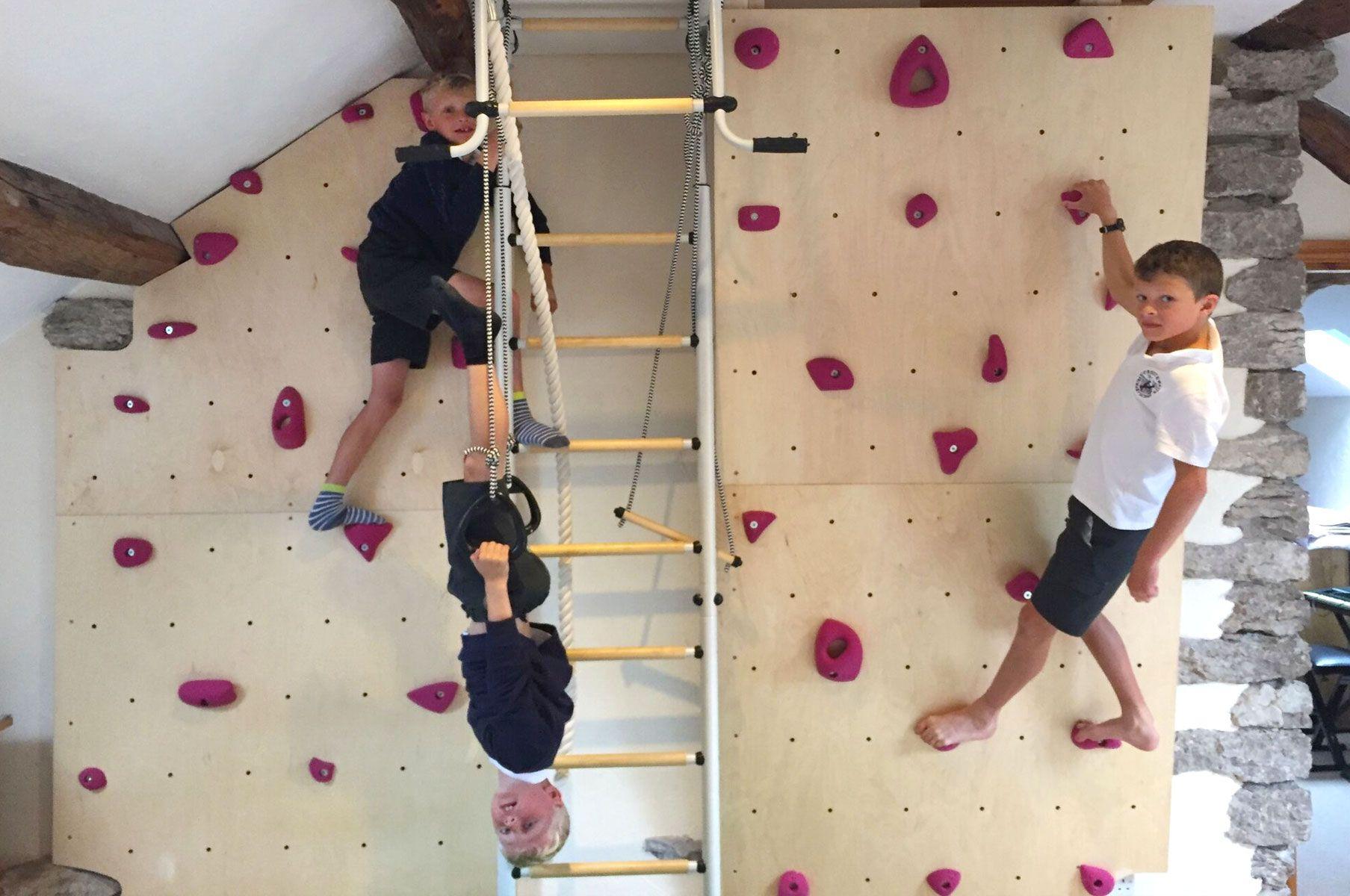 Boys climbing bedroom wall best homemade dog food