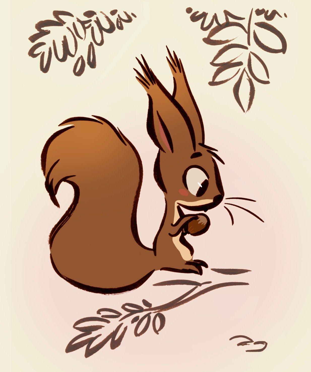 Cureil dessins animaux pinterest dessin cureuil - Ecureuil a dessiner ...