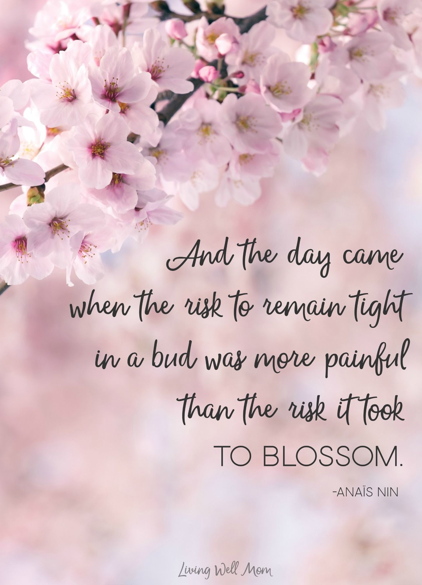 And The Day Came When The Risk To Remain Tight In A Bud Was More Painful Than The Risk It Took To Blossom Blossom Quotes Cherry Blossom Quotes Flower Quotes