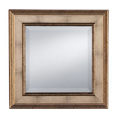 Prinz Palazzo Mirror with Styrene Border Picture Frame Size: 17\