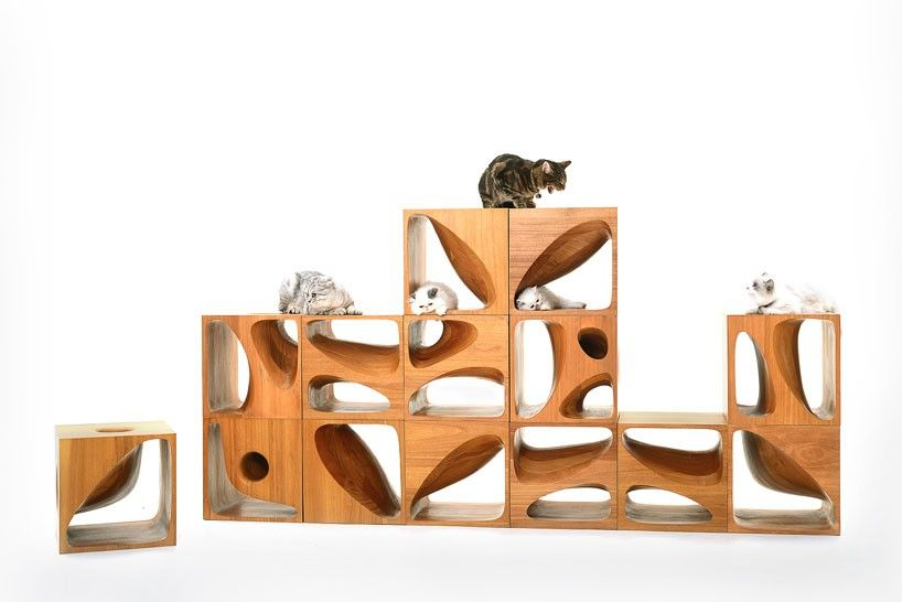 CATable 2.0: Stylish Wooden Cubes Keep Your Cat Entertained And Double As  Furniture