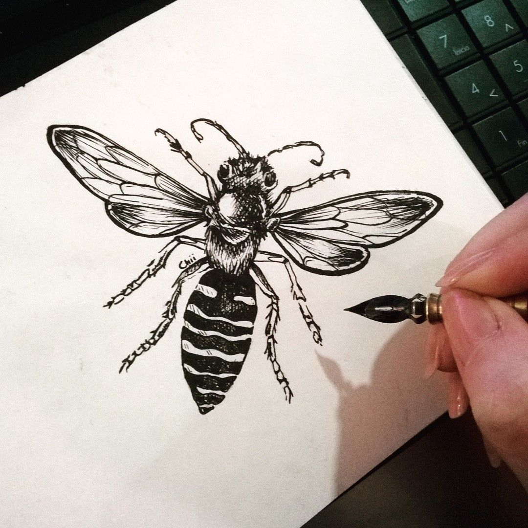 My Ink Drawings.- Bzz bzzzz... Chinese Ink #pelikan #chinesseink ...