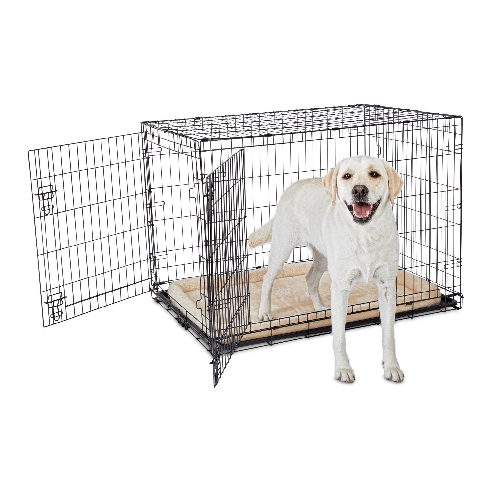Animaze 2 Door Folding Dog Crate 42 8 L X 28 7 W X 30 3 H Folding Dog Crate Dog Crate Your Dog