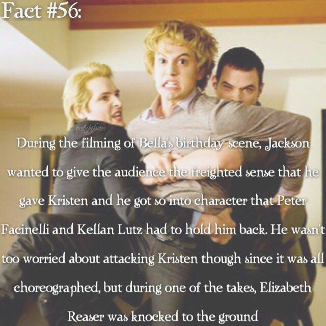 Twilight Wedding Quotes: Twilight, Facts And Mockingjay