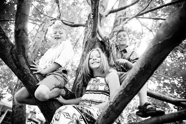 love climbing the tree