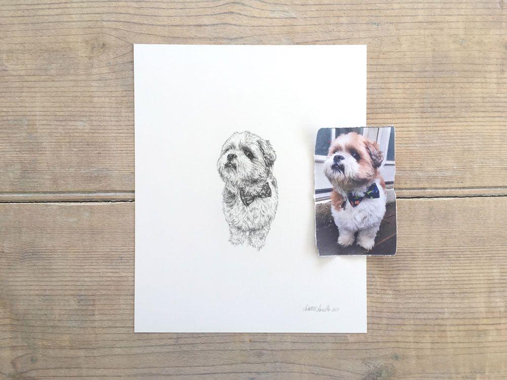 Hand Drawn Pet Portraits By Susanne Kasielke Dog Milk Pet Portraits Modern Dog