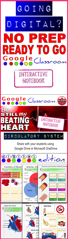 Circulatory System Drive Interactive Notebook