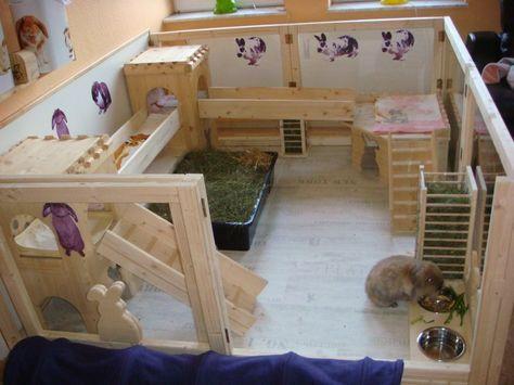 Gehegebilder (mit Bildern) Kaninchenkäfig