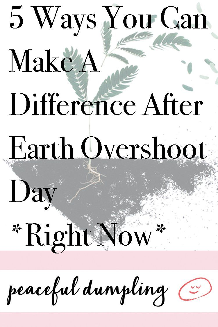 5 Ways You Can Make A Difference After Earth Overshoot Day Right Now Earth Overshoot Day Overshoot Day Earth