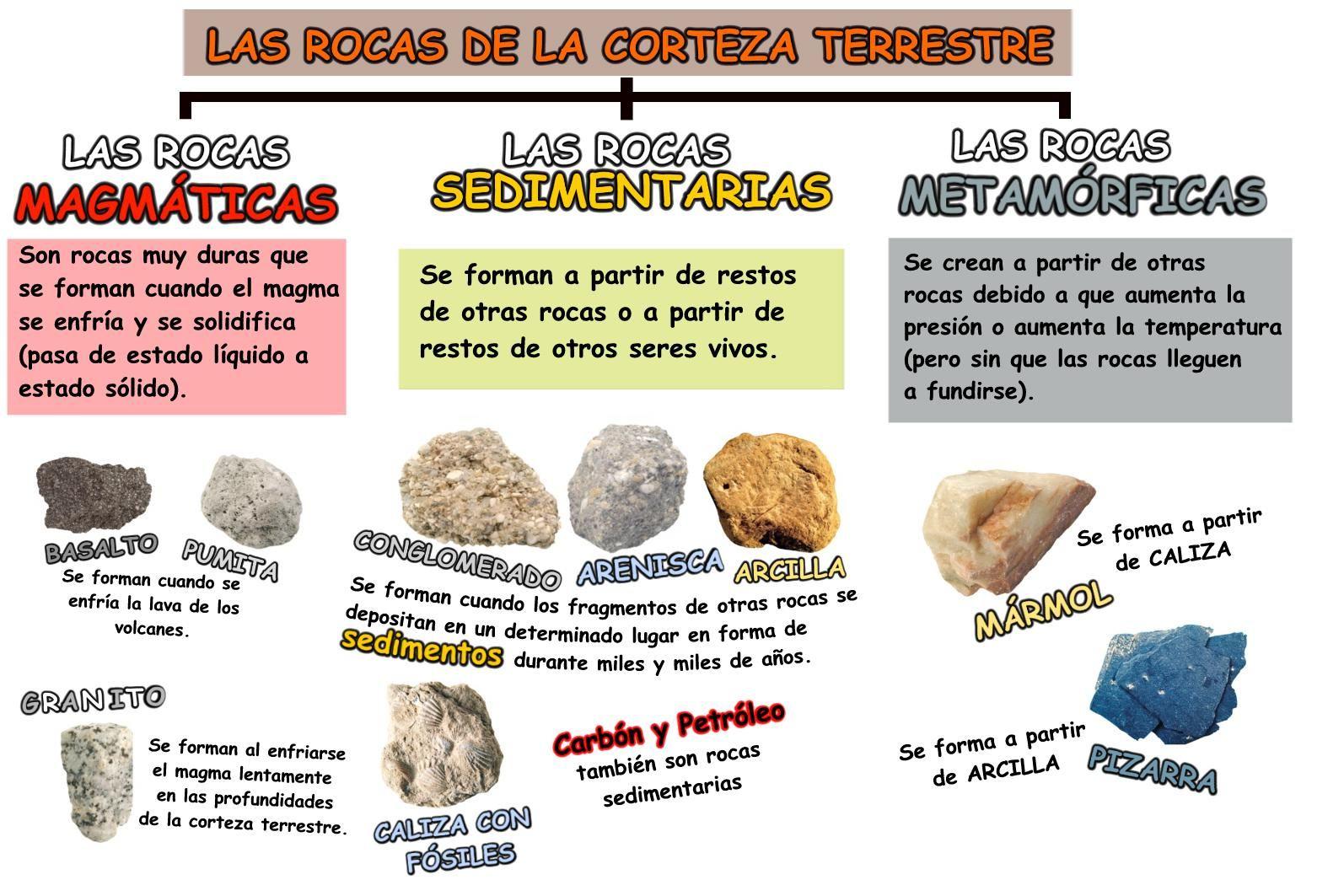 Blog De Ciencias Tipos De Rocas Tipos De Rocas Rocas Y Minerales Clasificacion De Rocas