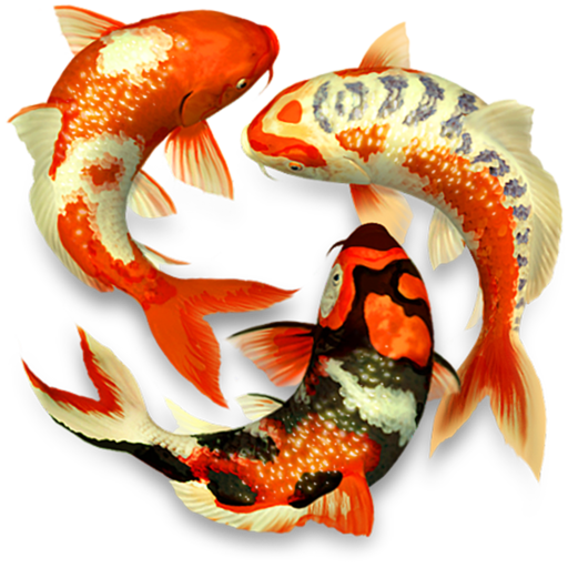 Koi Pond 3d Surprisingly Relaxing Background Images Music Over 940 5 Ratings 1 99 Free Koi Fish Koi Fish Drawing Fish Drawings