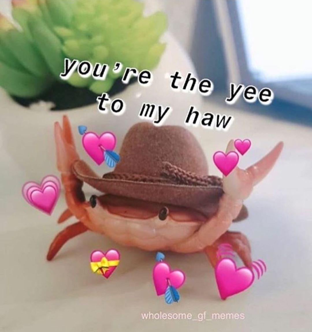 Pin By Saka On Reaction Images Cute Love Memes Cute Memes Love You Meme