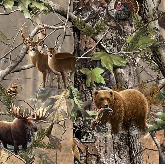 Realtree Deer And Bear Cakes Prints Camo And Wildlife Animals