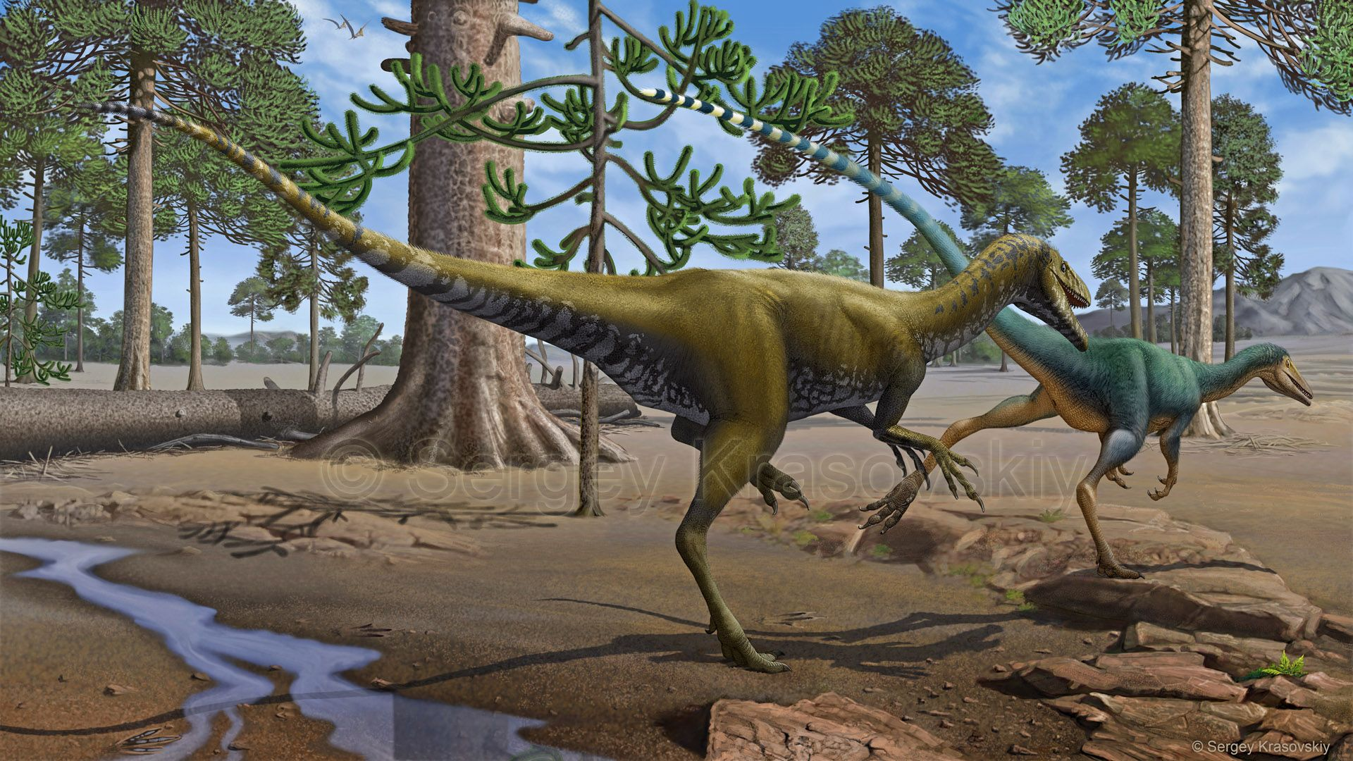 SANTANARAPTOR PLACIDUS PDF DOWNLOAD