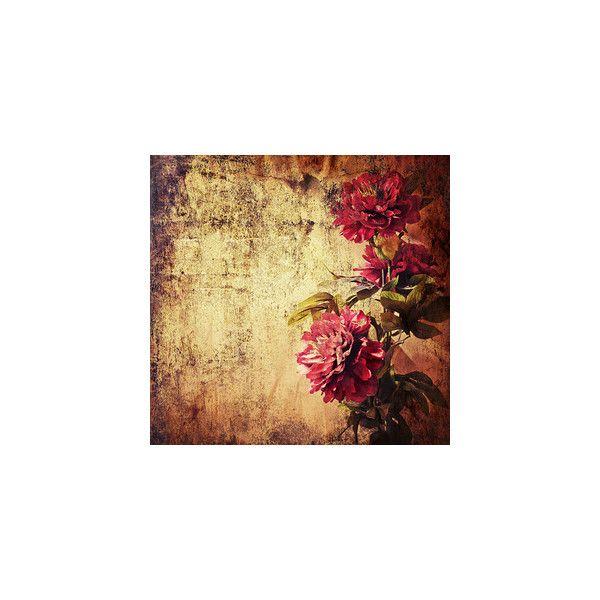 Arana Flipkens - album «VINTAGE-DECOUPAGE / Vintage Roses» på Yandex ❤ liked on Polyvore featuring backgrounds