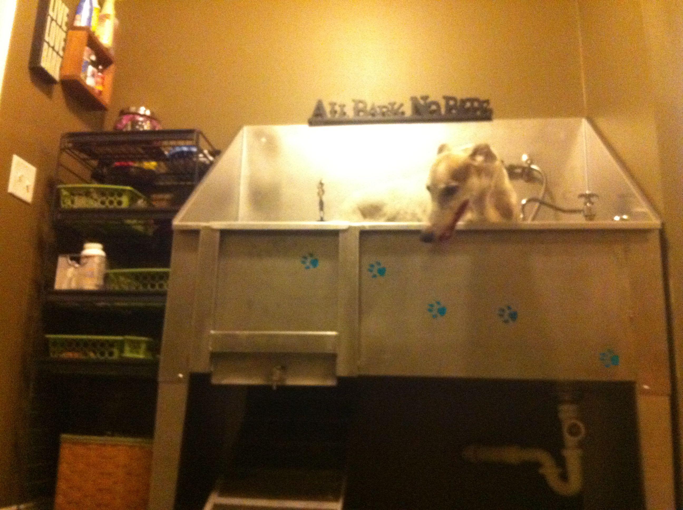 Greyhound wash grooming dog tub mud room dog tub mud