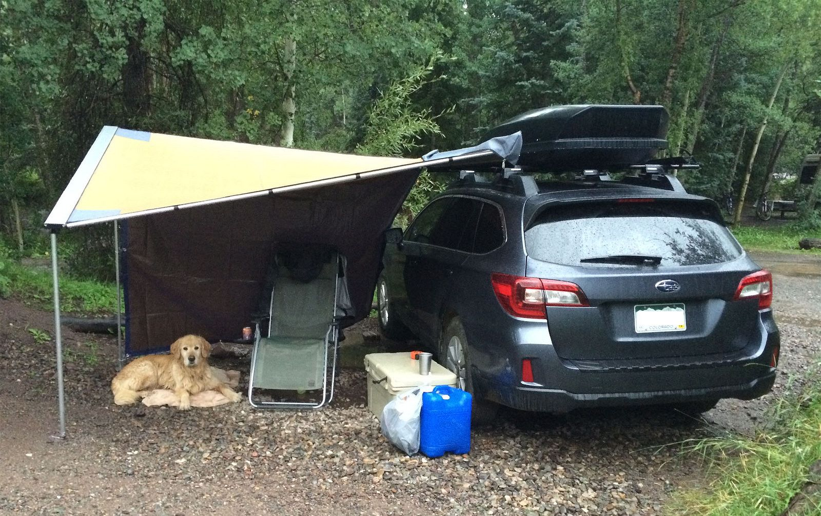 Rear Window Drivers Camping In The Subaru Bed Frame