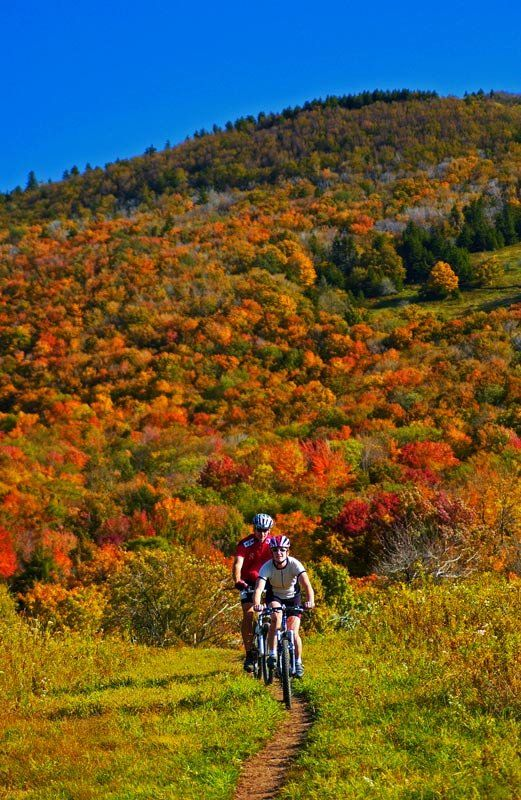 Cannan Valley Great Bike Riding Trails West Virginia