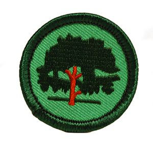 Gscm Forest Explorer Jr Badge Girl Scout Patches Girl Scout Songs Badge
