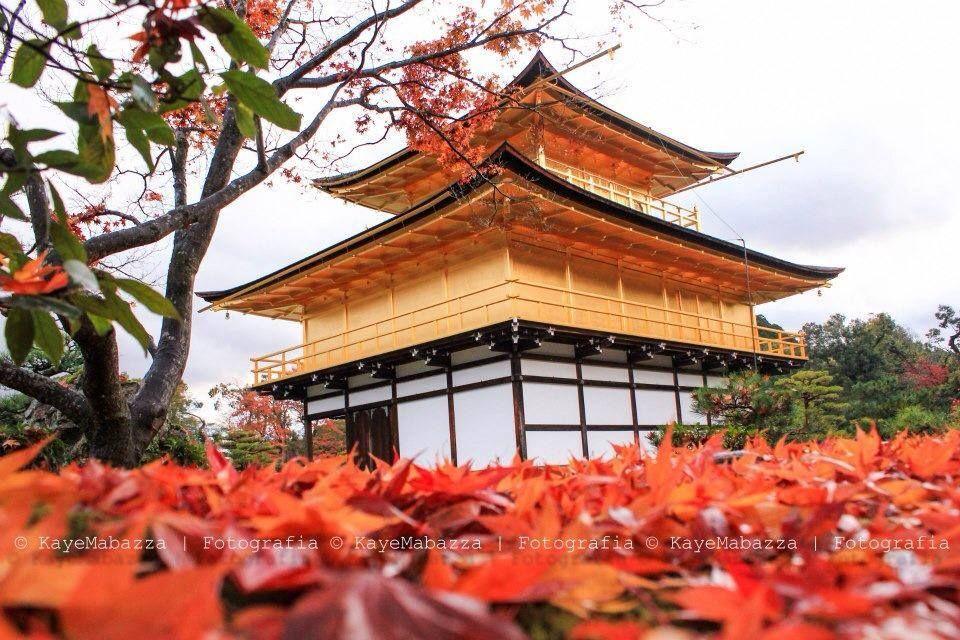 Golden Pavilion at Autumn
