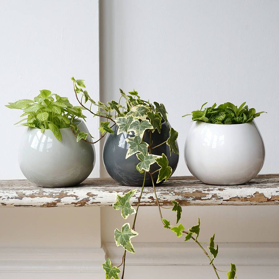 Ceramic Wall Hanging Plant Pot Hanging Plant Light Gray