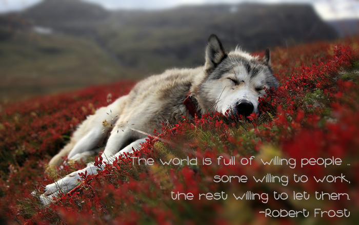 The world is full of willing people -- some willing to work, the rest willing to let them. --Robert Frost