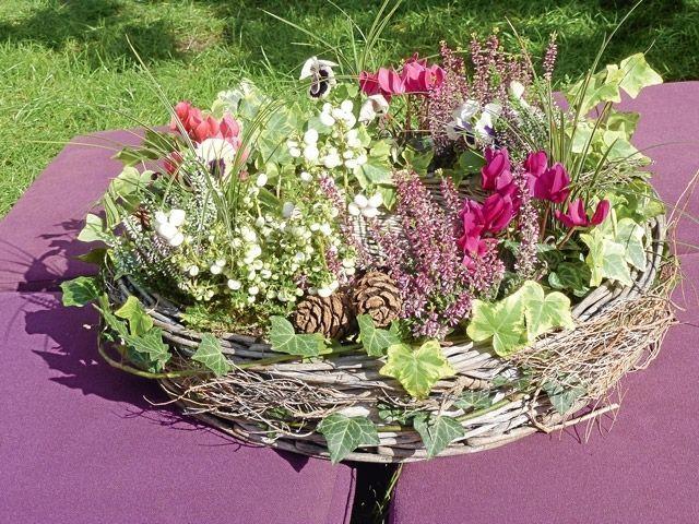 bildergebnis f r floristik grabgestaltung grab be pflanzen pinterest grabgestaltung. Black Bedroom Furniture Sets. Home Design Ideas