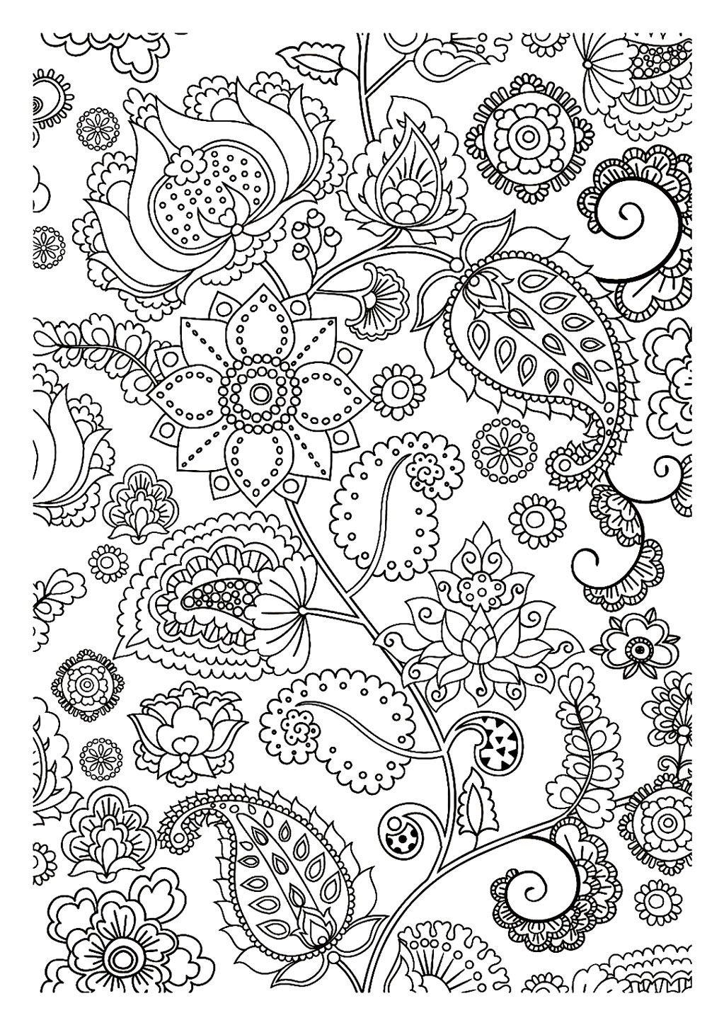Free Flowers And Leaves Zen Tangle Coloring Page For Adults