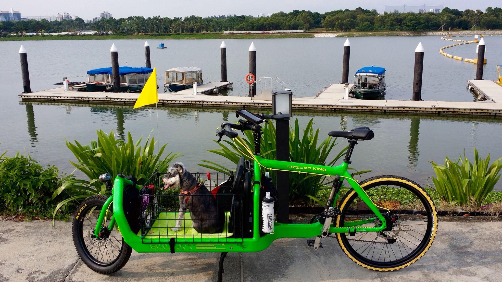 Bullit Lizard King Cargo Bike