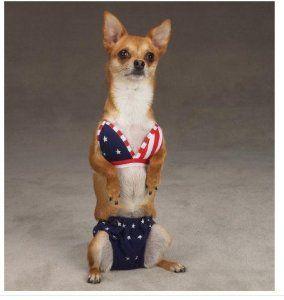 37e741f7635be All-American Bikini Dog swimsuit $9.99 on Amazon.   dog toys ...