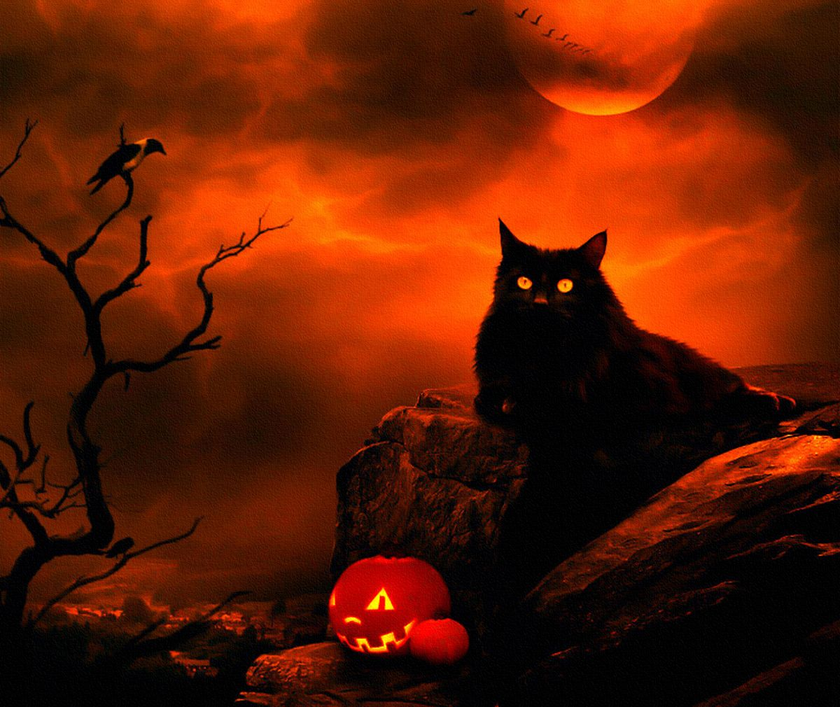 Halloween Cat Moon Night Clouds Crow Black Halloween Pictures Halloween Cat Halloween Painting