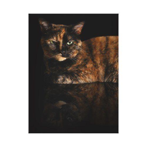 House Cat Reflection Canvas Print