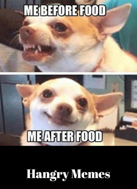Hangry Memes Funny Food Memes Fitness Jokes Funny Gif