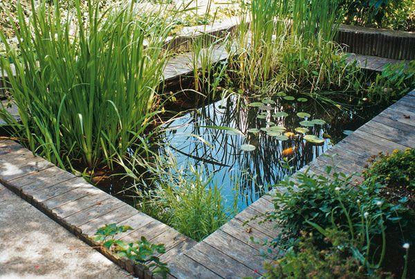 Údržba záhradného jazierka 9