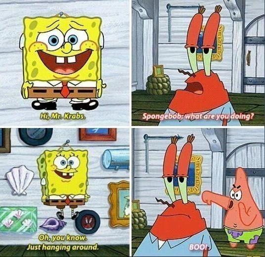 23 Lines From Spongebob Squarepants That Never Get Old Spongebob Jokes Spongebob Funny Spongebob