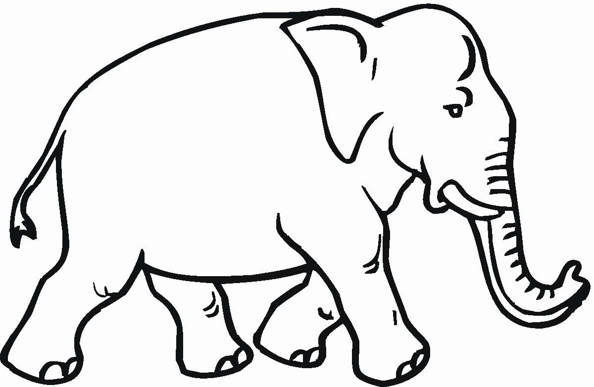 Animal Coloring Pages Elephant New Free Elephant Coloring ...