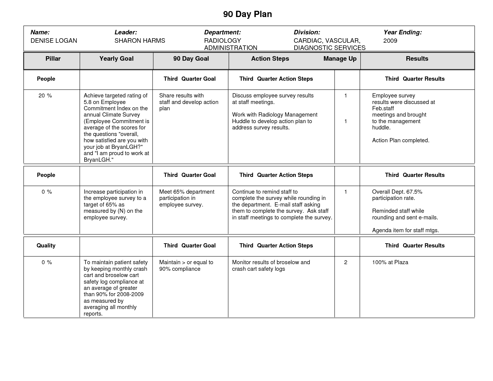 Sample 90 Day Plan Template Action plan template