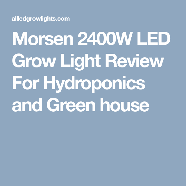 Morsen 2400w Led Grow Light Review For Hydroponics And