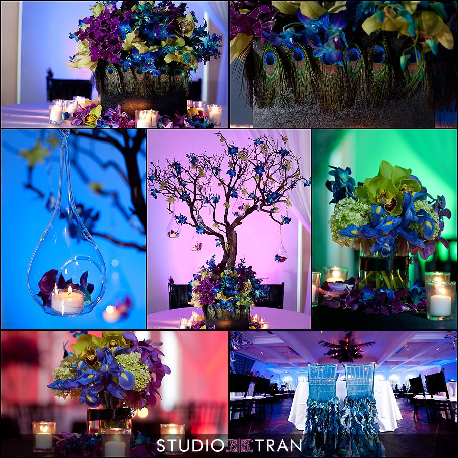 Peacock Wedding Centerpieces Ideas: Peacock Theme Color Wedding