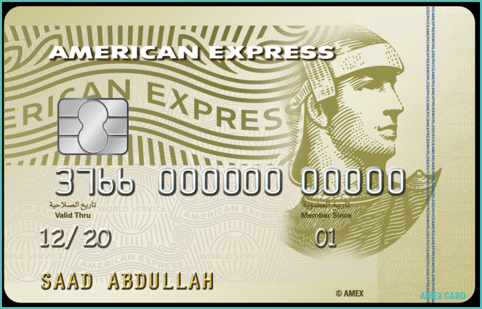 Why Is Everyone Talking About Amex Card Amex Card Https Www Cardsvista Com Why Is Everyone Talki Amex Card American Express Platinum American Express Gold