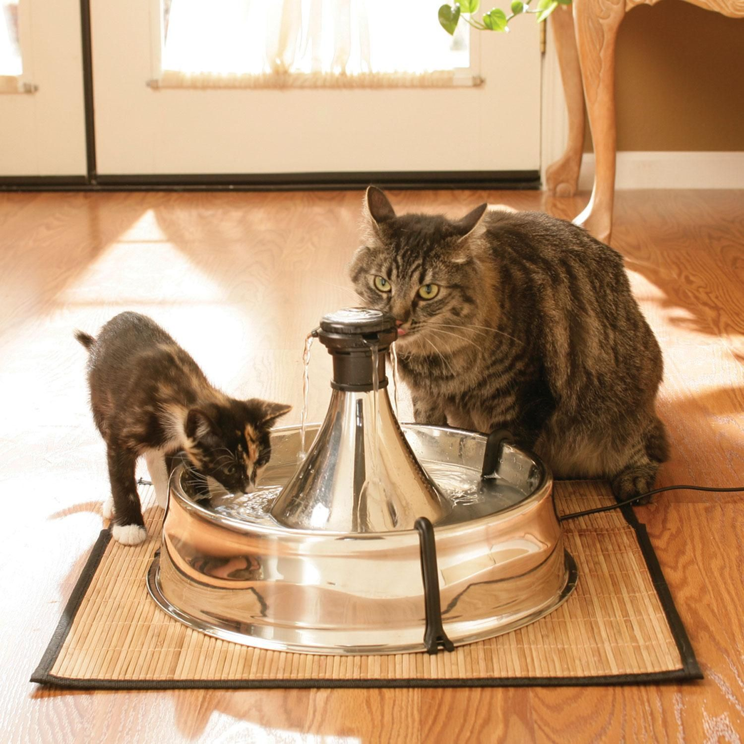 Drinkwell 360 Stainless Steel Pet Fountain Multi Pet Cat Water Fountain Pets